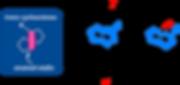 trans-cyclooctene catalyst.png