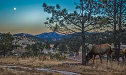Colorado (3)