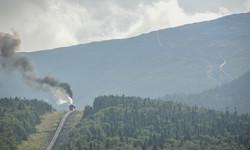Train (6)