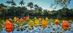 Fairchild Gardens (4)