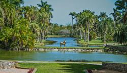 Fairchild Gardens (2)