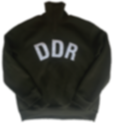 DDR-small.png