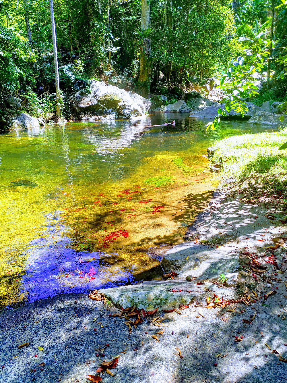 clear running stream