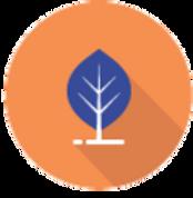Ambiente-arancione_edited_edited.png
