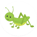 greengrasshopper.png