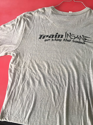 TRAIN INSANE OR REMAIN THE SAME TEE