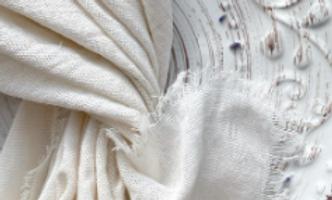 Ivory Cotton Napkins
