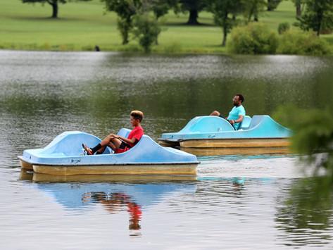 Environmentally Friendly Activities You Can Do Around Lexington