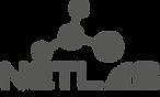 Logo_grey_trans.png