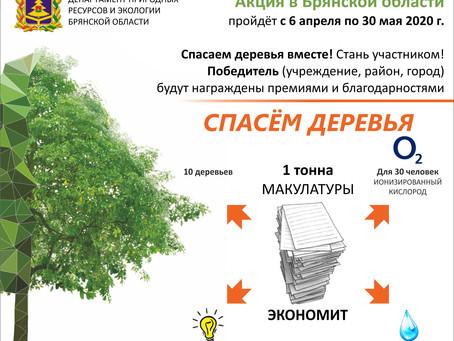 «Сдай макулатуру – спаси дерево!». Акция!