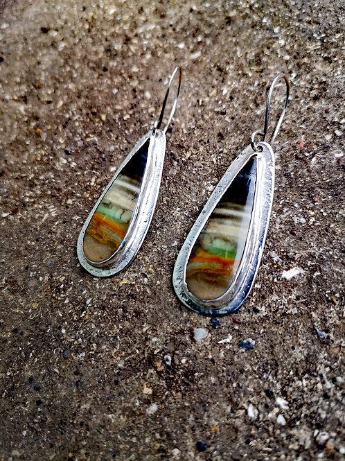 Petrified Opalized wood and Silver Earrings
