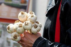 Garlic-Festival-800x530.jpg