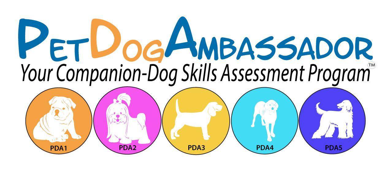 Pet Dog Ambassador One to One