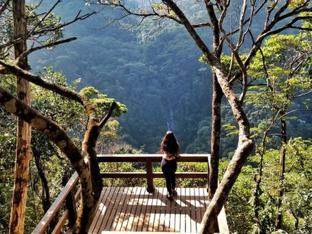 Você sabia que a Floresta da Tijuca é o parque mais visitado do mundo?