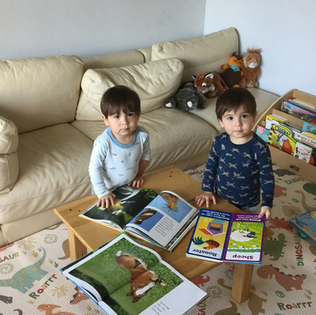Reading for… fun, learning, sleep and tantrum .Using books as a problem-solving strategy with kids