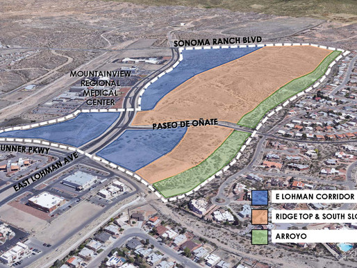 Share Your Vision for the East Lohman Area
