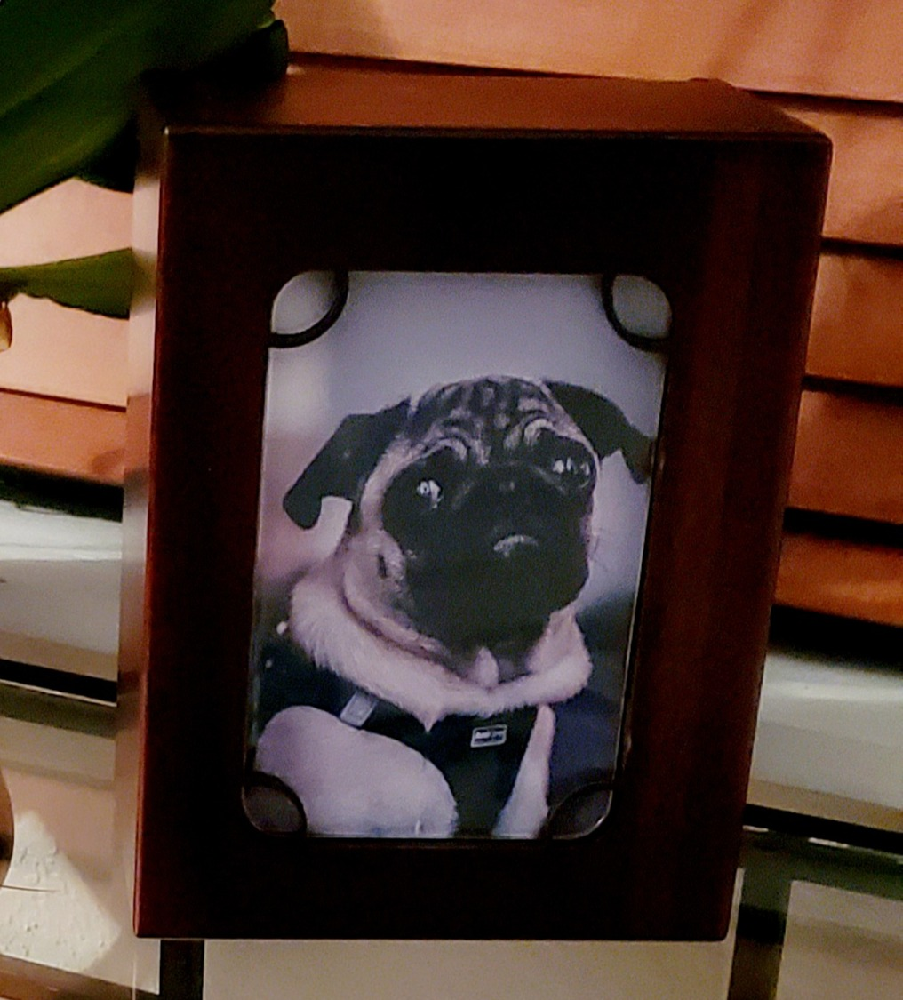 Basic Pet Urn With Photo Cut Out