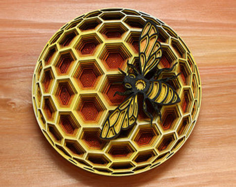 Layered Beehive Project