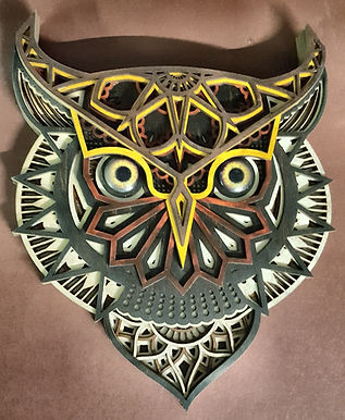 Layered Owl Project