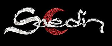 Saedin Logo nanderas.png