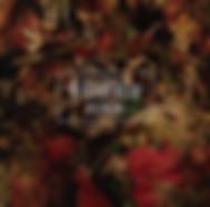 スクリーンショット 2020-01-02 0.04.21.png