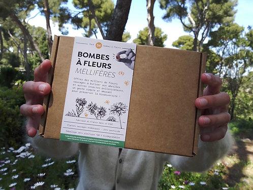 Pack 54 bombes à fleurs mellifères