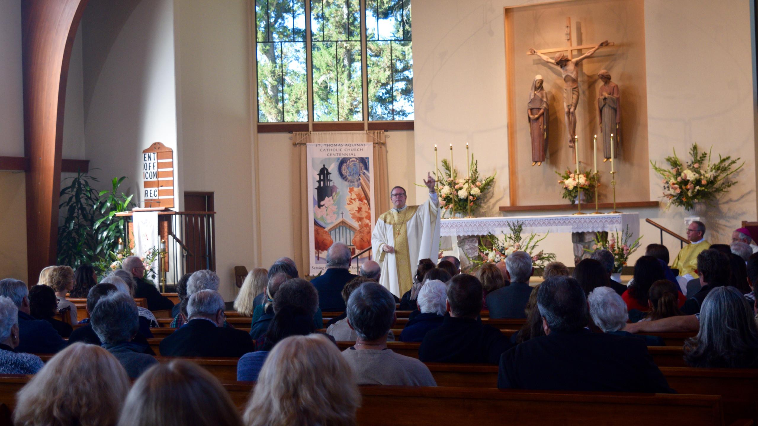 Bishop Barron Preaching