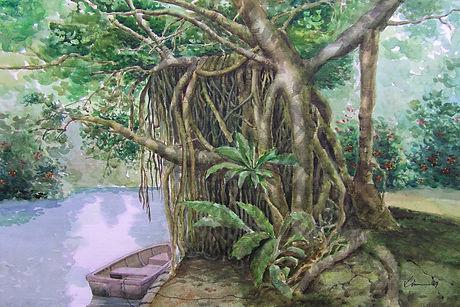 WC001 H50xW71 Btanic Gardens Banyan Tree.jpg
