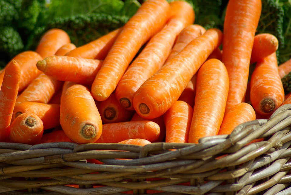 Carrots are eaten while still alive.
