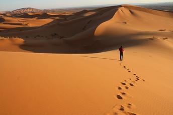 Ten years of wandering in the jobs desert