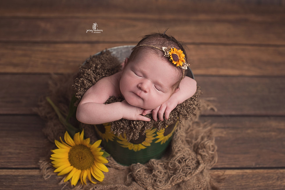 Jersey newborns photography