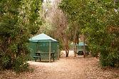 Sitio bosque 2.jpg