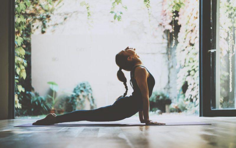 elate online yoga programs
