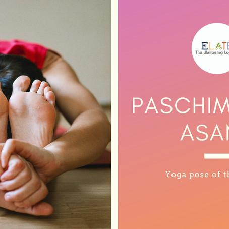 Paschimottanasana- Yoga asana of the month