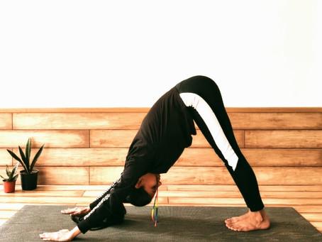 Downward Dog Yoga Asana