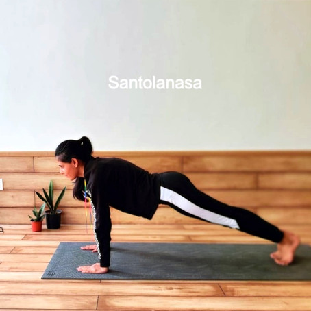 Santolanasana or Plank Pose