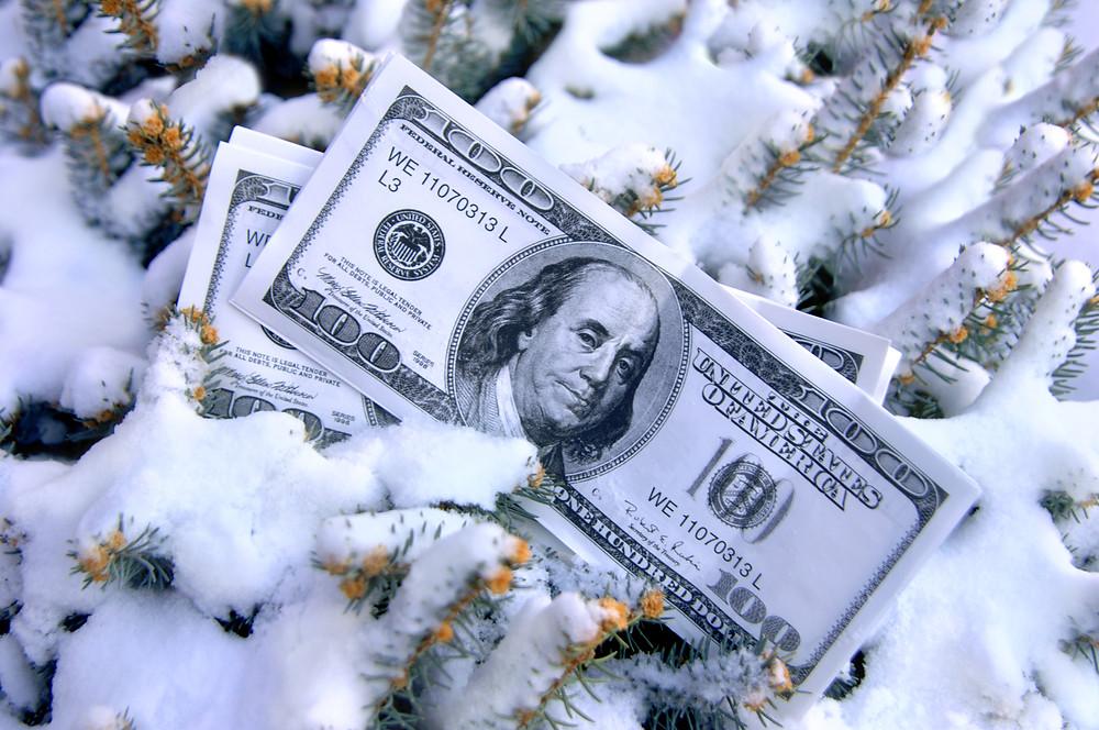 money on snow covered tree