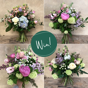 Competition with Highgate Florist & Growers