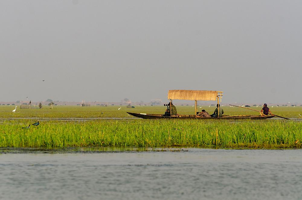 Boatride at Mangalajodi