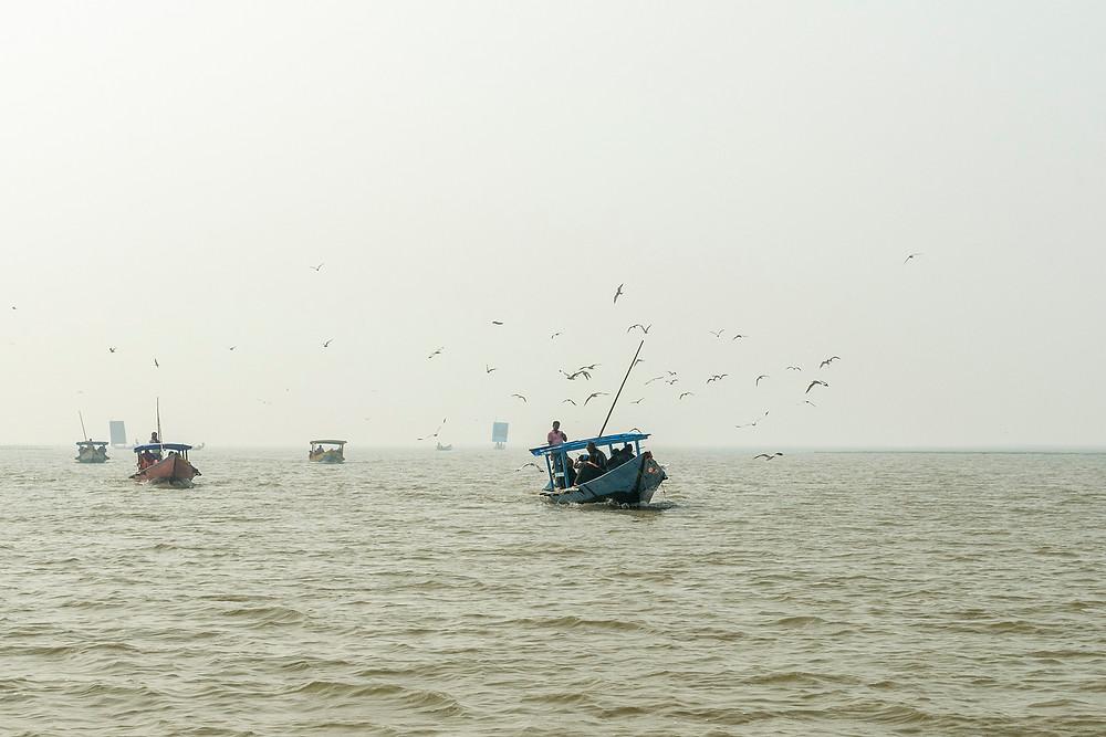 Chilika Dolphin Boats