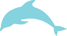 dolphin-310487_1280_edited.png