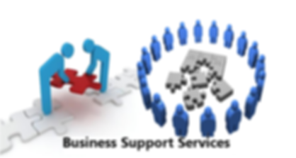 businessSupportServices.png