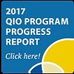qio_program_progress_report_2017_widget_