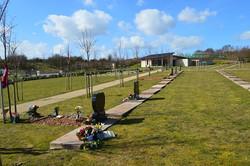 Memorial Plots