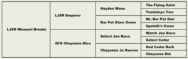 Cheyenne.jpg