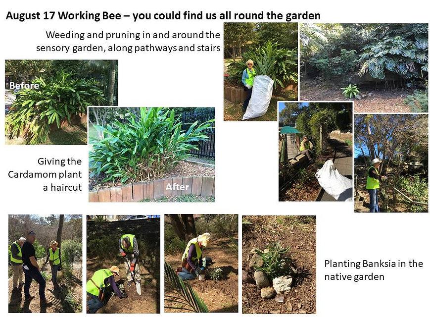 August 19 Working Bee.jpg