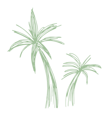 bajan_palms_black.png