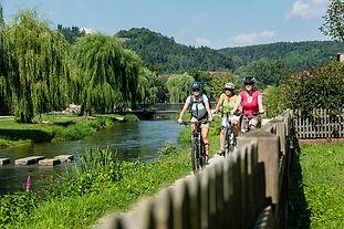 Sommerreisen; Ferien mit dem Reisecar; Carreisen Schweiz; Sommerferien in der Schweiz; Wallis; Ferien mit dem Car