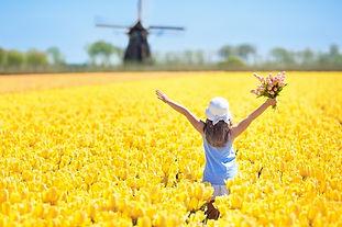 Frühlingsreisen Reisecar, Busreise Holland ab Schaffhausen, Carreise Vinschgau, Veloreise, Reise mit dem Fahrrad