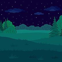 Summer Forest Glade